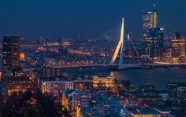 Erasmus Bridge, Rotterdam, Países Bajos, río, paisaje urbano, noche, luces
