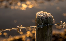 Preview wallpaper Fence, stump, frost, wire