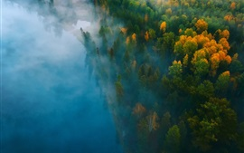 Preview wallpaper Forest, river, fog, morning, top view
