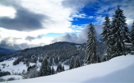 Preview wallpaper Germany, Baden-Wurttemberg, winter, snow, forest