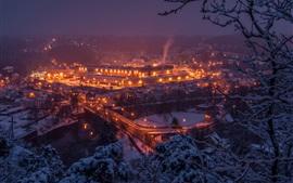 壁紙のプレビュー ドイツ、ザクセン、橋、夜、川、都市、雪、冬