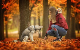 Girl and dog, trees, autumn