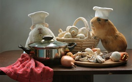 Preview wallpaper Guinea pigs, cooks, mushrooms, pan, funny animals