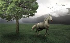 Caballo a pie, hierba, árboles, niebla, mañana