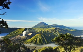 Preview wallpaper Indonesia, Mount Bromo, volcanoes, valley, trees, fog