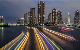 Япония, Токио, город ночь, мост, река, огни