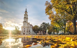 Preview wallpaper Kaunas, Lithuania, Town Hall, autumn