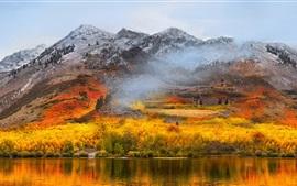 Lago, montanhas, floresta, outono, nevoeiro