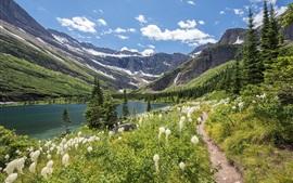 Озеро, горы, трава, цветы, облака, природный ландшафт