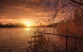 Preview wallpaper Lake, sunset, bench, grass, birds