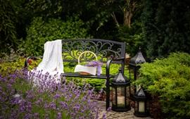 Flores de lavanda, banco, jardín