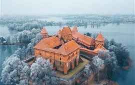 Preview wallpaper Lithuania, Trakai, Island Castle, trees, lake