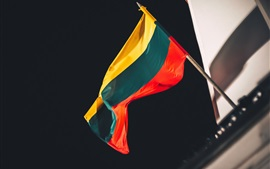 Preview wallpaper Lithuania flag, night