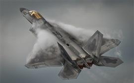 Preview wallpaper Lockheed Martin F-22A Raptor flight, smoke