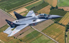 Preview wallpaper MiG-29A multi-role fighter, sky, fields