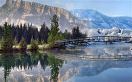 Mountains, bridge, river, snow, trees