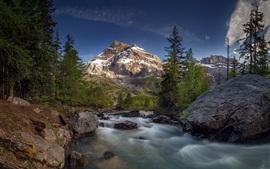 Montañas, piedras, árboles, río