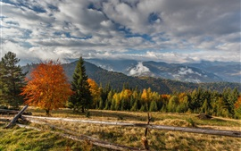 Mountains, trees, fence, clouds, autumn