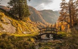 Montañas, árboles, hierba, pequeño puente
