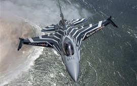 Multifunction F-16 fighter