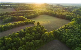 Preview wallpaper Nature landscape, top view, trees, green fields