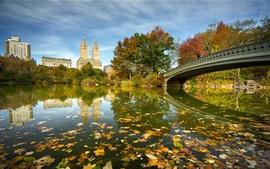 Preview wallpaper New York, Central Park, bridge, lake, trees, autumn