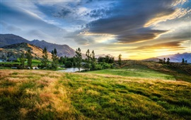 Nueva Zelanda, hierba, árboles, lago, nubes, puesta del sol