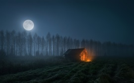 Preview wallpaper Night, trees, wood house, fire, moon