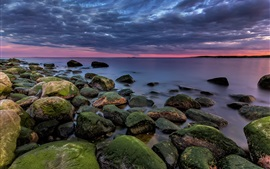 Preview wallpaper Norway, Asmaloy, sea, stones, moss, clouds, dusk