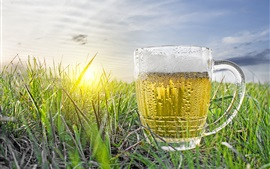 One cup of beer, water droplets, cold, grass
