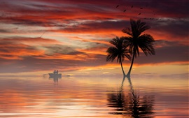Palmeras, mar, barco, cielo, puesta del sol, nubes