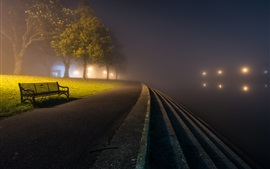 Park, night, road, bench, trees, fog