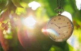 Pocket watch, leaves, glare