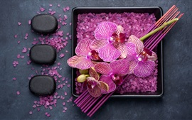 Preview wallpaper Purple phalaenopsis, petals, sea salt, SPA theme