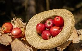 Красные яблоки, шляпа, солнце