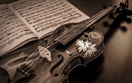 Preview wallpaper Retro style, violin, music score