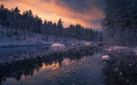 Ringerike, Norway, forest, river, winter, snow