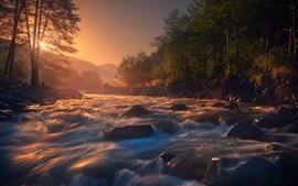 Vorschau des Hintergrundbilder Fluss, Steine, Wasser, Bäume, Nebel, Morgen