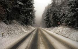 Дорога, снег, деревья, туман, зима