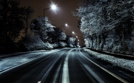 Road, trees, snow, winter, night, lights