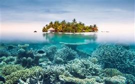 預覽桌布 海,水下,珊瑚,島嶼,度假村