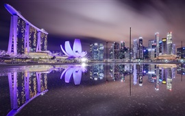 Cingapura, noite da cidade, iluminação, lago
