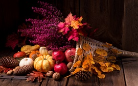 Still life, pumpkin, pomegranate, flowers, leaves