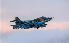 Preview wallpaper Su-25 blue fighter
