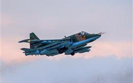 미리보기 배경 화면 Su-25 파란 전투기