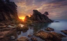 夕日、岩、海