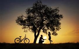 Árbol, bicicleta, siluetas, amantes, puesta de sol