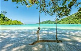 Preview wallpaper Tropic, sea, waves, swing, trees