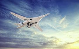Preview wallpaper Tu-160 aircraft flying, White Swan, sky, clouds