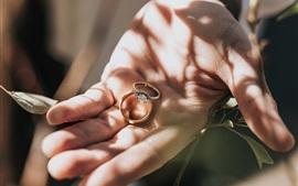Aperçu fond d'écran Deux anneaux dans les mains